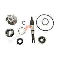 Ремкомплект помпы охлаждающей жидкости Хонда СШ125/150, Honda SH125/150, полный комплект