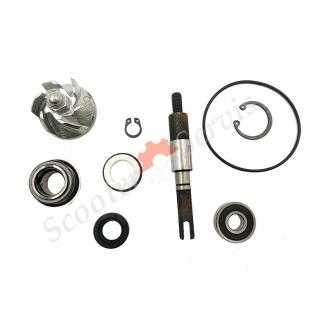 Ремкомплект помпи охолоджуючої рідини Хонда СШ125 / 150, Honda SH125 / 150, повний комплект