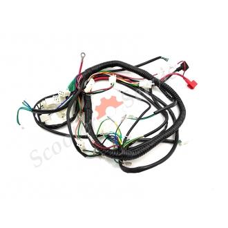 Проводка центральной части мотоцикла тип Honda CB/CG 150/200 кубов, CDI AC